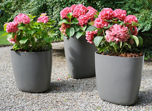 Eternit Molded Concrete Planter 2